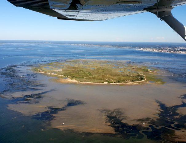 Baptême de l'air Arcachon - Île aux oiseaux