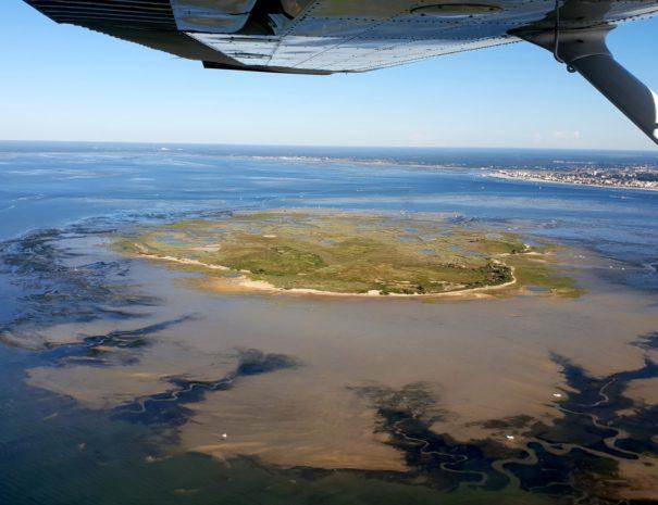 Vol découverte Arcachon - Île aux oiseaux